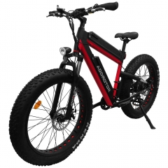 Addmotor MOTAN M-B2 750W Dual Batteries Front Suspension 26 Inch Fat Electric Bike